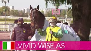 Vivid wise as det första och även den efterföljande lottdragningen. Valkommen Till Elitloppet 2021 Vivid Wise As Youtube
