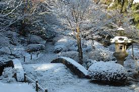 winter at the seattle japanese garden photo by david ok