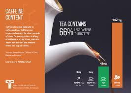 Green Tea Caffeine Vs Coffee Chart How Good Or Bad Is Caffeine In Tea