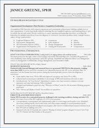 Software Developer Resume Template Professional √ Entry Level