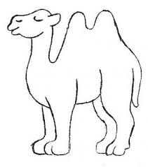 Small Picture 10 best Camels coloring book images on Pinterest Coloring books