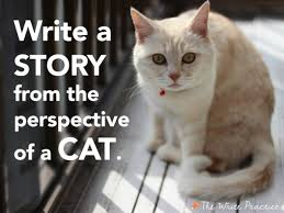 writing prompts about cats writing prompts about cats