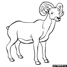 Small Picture General Animals Online Coloring Pages Page 1