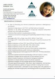 Cv Guidelines Sample Template Of Professional Curriculum Vitae