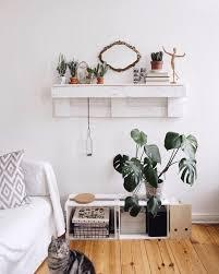 Pflanzen Im Wohnzimmer Gesund
