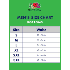 Fruit Of The Loom Color Chart 2017 Fruit Of The Loom Mens Dual Defense Assorted Fashion Brief 5 Pack Extended Sizes