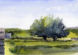 fruit trees early spring watercolor landscape painting