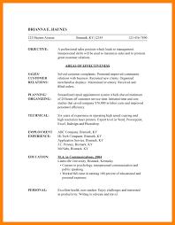combination resume template word - Hybrid Resume