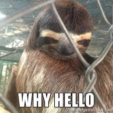 why hello - Creepy Sloth Rape | Meme Generator via Relatably.com