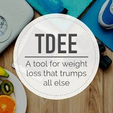 Tdee Calculator Easily Calculate Your Daily Calorie Needs