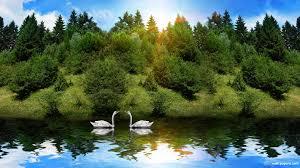 Nature Wallpaper HD Desktop ...