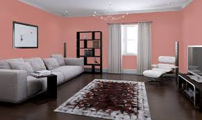 paint interiorDecorative paint  for walls  interior  acrylic  COVERMATT