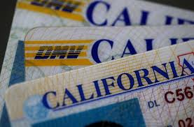 Law Gov Into Option Signs Driver's For Licenses Birth Certificates 'nonbinary' California Gender Ktla Brown