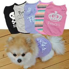 Details About Small Dog Cat Crown Summer Shirts Vest Clothes Puppy T Shirt Coat Pet Apparel