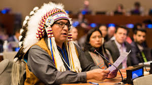 UNPFII Eighteenth Session: 22 April - 3 May 2019   United Nations ...