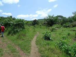 """Résultat de recherche d'images pour """"terres cultivables à boké"""""""