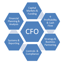 What Are The Key Responsibilities Of A Cfo? - Quora