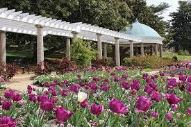 best gardens in richmond richmond mom