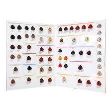 Color Design Hair Colour Chart Two Folder Hair Color Swatch Book Color Design Hair Color Chart Hair Color Shades Buy Hair Color Swatch Book Color Design Hair Color Chart Hair