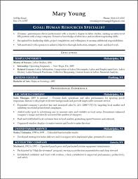Resume Format Entry Level Resume Template Entry Level Marketing Sample Photo Objective 19