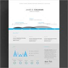 Infographic Resume Template Cool Infographic Resume Word Template Download Free Rebellions