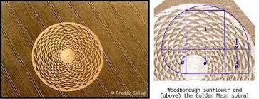 Image result for circle pattern <b>golden ratio</b>   Crop circles, Circle ...