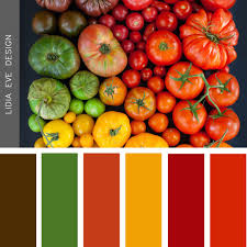 Tomato Color Chart Tomato Theme Color Palettes In 2019 Color Colour