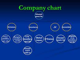 Gitanjali Gems Chart M E H U L C H O K S I