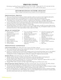 Sample Business Analyst Resume Junior Business Analyst Resume aurelianmg 33