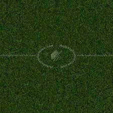 seamless dark grass texture. Green Grass Texture Seamless 13025 Dark E