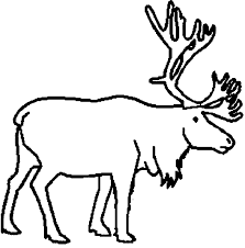 Small Picture Caribous coloring pages