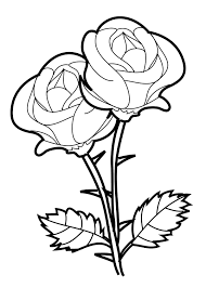 beauty and the beast rose drawing step by at getdrawings striking coloring book