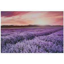 lavender acrylic wall art alternate image 3 of 4 images