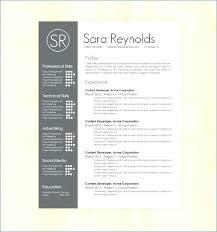 Microsoft Word Resume Template Download Fresh Free Modern Resume