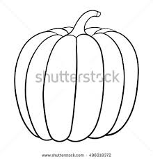 pumpkin drawing. pumpkin. outline vector illustration isolated on white background pumpkin drawing w