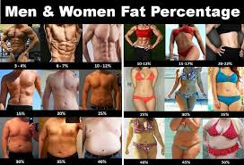 Body Fat Men Chart Strength Fighter Bodybuilding Charts
