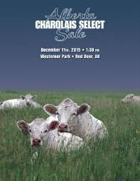 Ab select 2015 catalog web by Charolais Banner issuu
