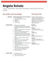 Simple High School Resume Examples High School Resume Example No Experience