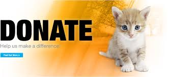 animal shelter donate. Brilliant Donate Donate For A Cause Inside Animal Shelter F