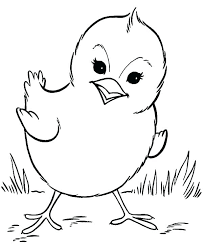 Chicks Coloring Pages Printable Free Printable Coloring Pages