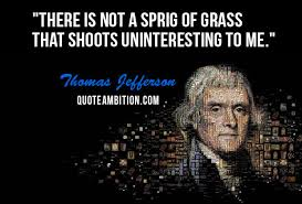 Thomas Jefferson Famous Quotes Stunning Top 48 Famous Thomas Jefferson Quotes