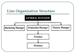 Organizational Chart Meaning Line And Staff Relationship In Organization With Example