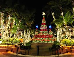 symphony of lights santa train rides in south broward fort lauderdale on the
