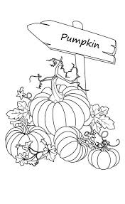 Small Picture Pumpkin Patch Coloring Page Download Coloring Pages Blank