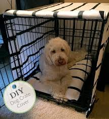 cover in diy dog crate astounding