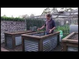 raised vegie beds