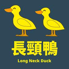 長頸鴨 Long Neck Duck
