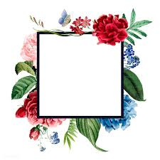 Flower Border Wallpaper Background Design