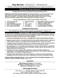 Senior Product Manager Job Description Template Templates