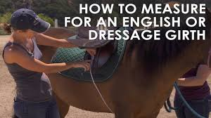Girth Size Chart Horse How To Measure Your Horse For English Dressage Girth Size